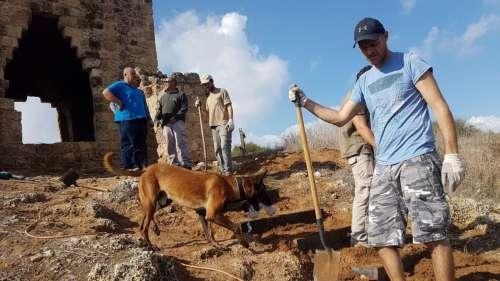 התנדבות עובדי סימנס בגן לאומי נחל אלכסנדר