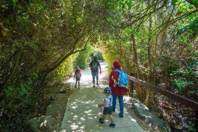 שמורת טבע תל דן