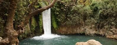 שמורת טבע נחל חרמון (בניאס)