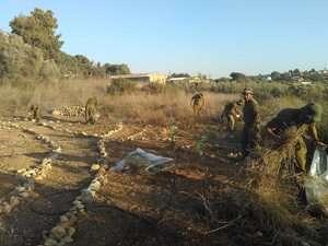 חיילים מנקים באזור חוות השומר - צילמה טובית שמואלי