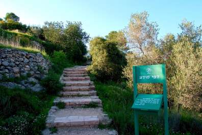 שמורת טבע המסרק