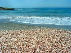 שמורת טבע חוף דור הבונים