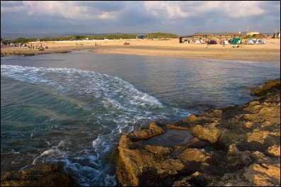 שמורת טבע חוף דור הבונים - צילם דורון ניסים