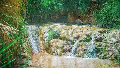 שמורת טבע עין גדי - צילום מנו גרינספן
