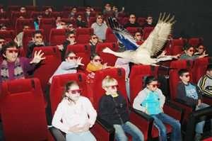 עופוריה - סרט רב חושי - לעוף עם ציפורים בשמורת החולה