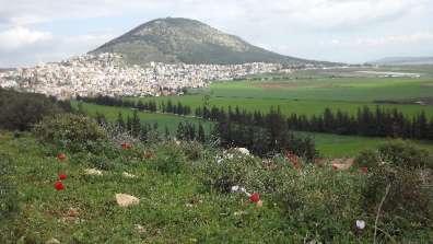 הר תבור צילם מוחמד מסאלחה (אבו רמזי)