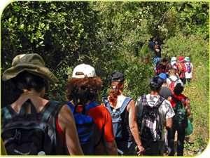 שביל הפסגה בשמורת טבע הר מירון - צילם דורון ניסים
