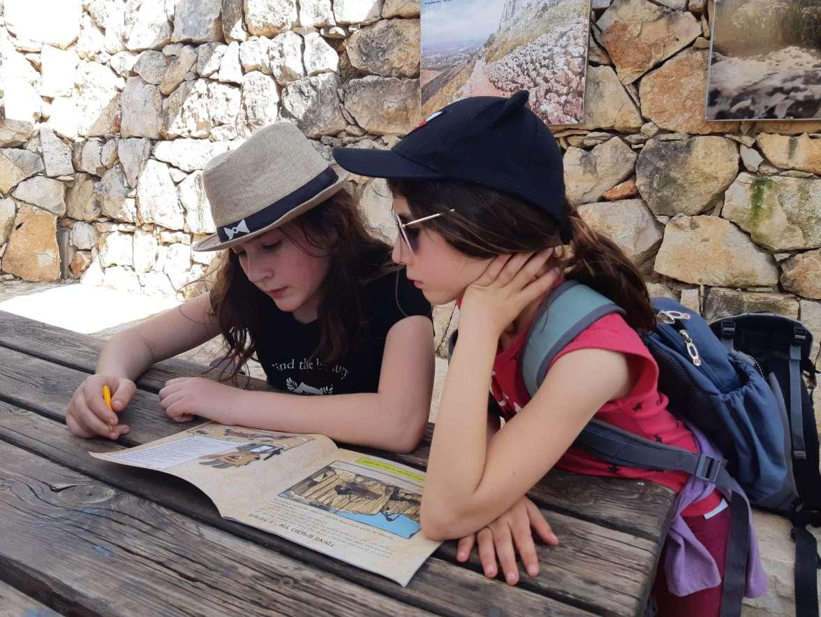 פקחיות צעירות בגן לאומי אשקלון.jpeg