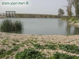 האגם המשוחזר וברקע קיר הסכר המערבי