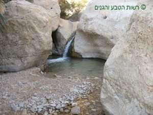 מגלשת סלע שנוצרה מהתחתרות המים