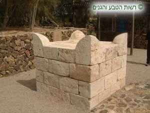 מזבח עם קרנות-מזבח