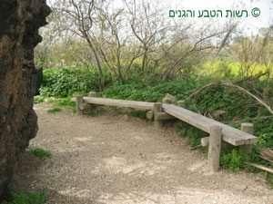 שביל ,ספסל וטבע בשמורה