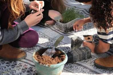 נוער אפק משקם צמחייה במסגרת תכנית 'מקומי בטבע'