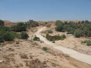 ערוץ נחל הבשור וברקע גבעות הלס