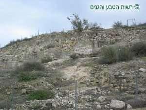 שרידי בניה - בית גוברין