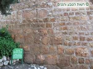 שרידים של החומה הצלבנית במבצר יחיעם ומעליה החומה מהתקופה העותמנית