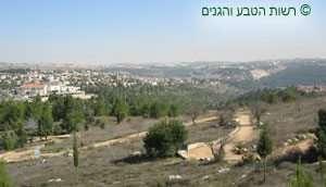תצפית לעבר מבואותיה של ירושלים