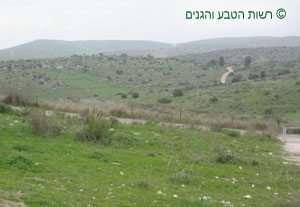 תצפית מגן לאומי בית גוברין אל השפלה הגבוהה והרי חברון
