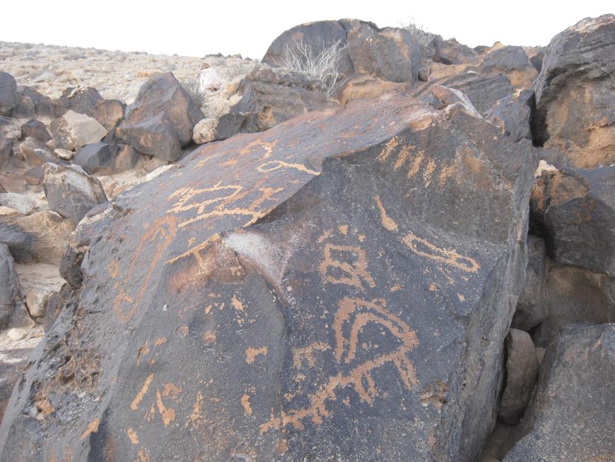 חרותות הסלע נחקקו בסלעי גיר בהירים בעלי קרום כהה (פטינה). צילום: ליאור שוימר