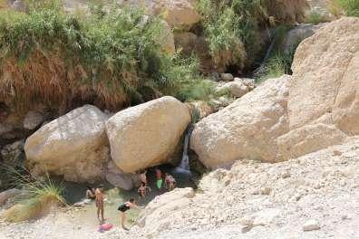 משתכשכים במפלים שבשמורת טבע עין גדי - נחל דוד