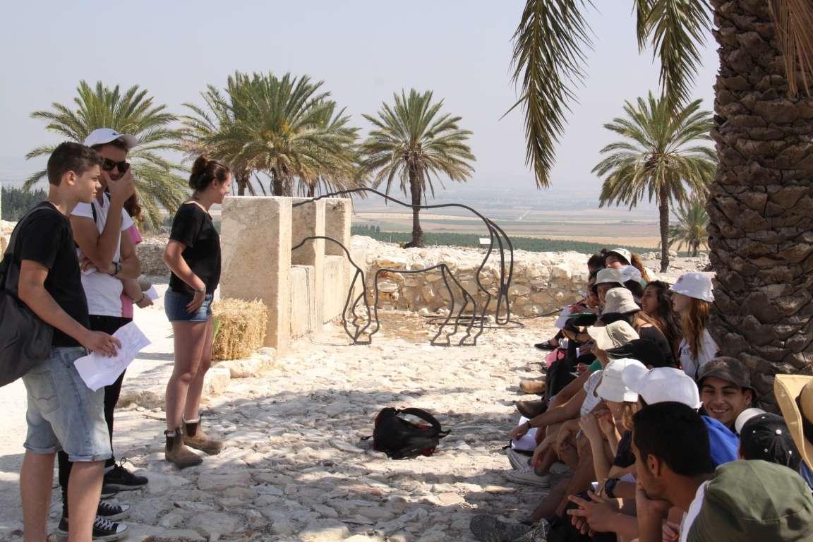 תלמידים לומדים תנך (מקרא) בגן לאומי תל מגידו
