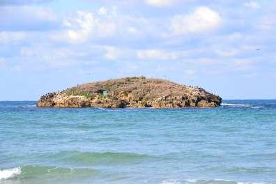 שמורת ים איי דור ומעגן מיכאל