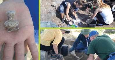 תמונות חופרים בכורזים.jpg