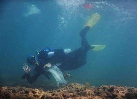 צולל מנקה בפלמחים, משמר הים.jpg