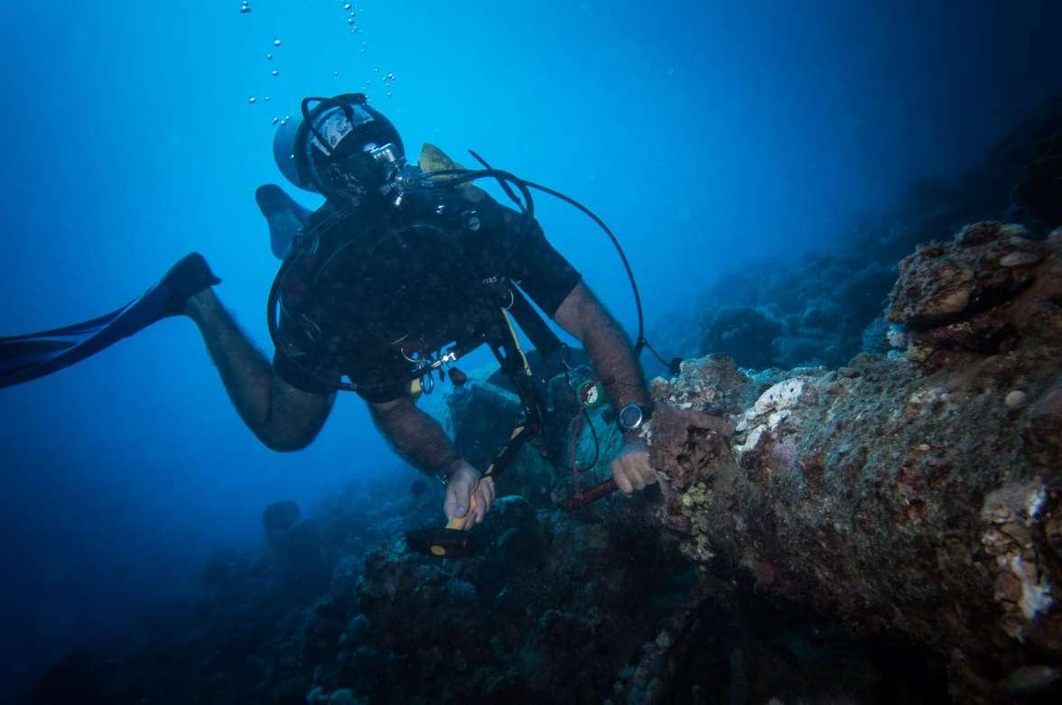 הצלת אלמוגים JPG
