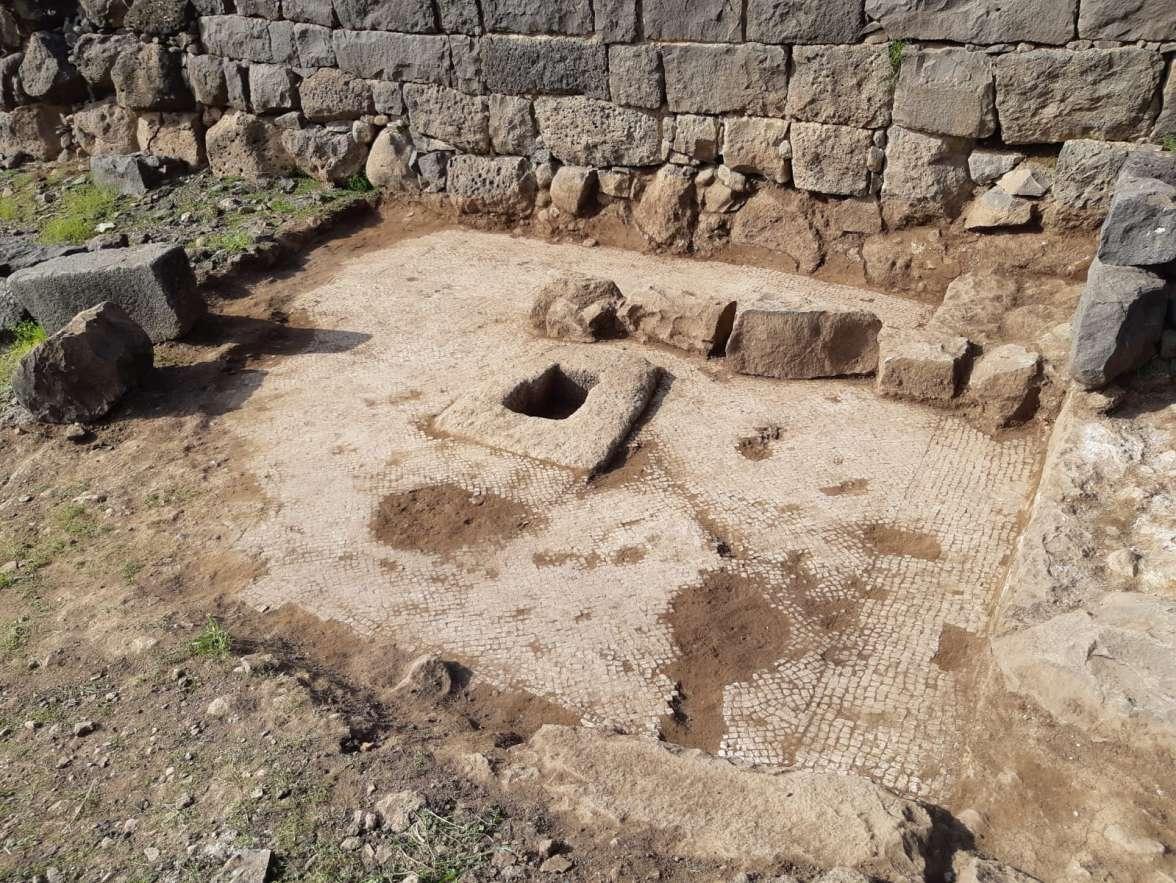 גת מעוטרת ברצפת פסיפס מפוארת מתקופת התלמוד התגלתה בחפירות בגן הלאומי כורזים.jpeg
