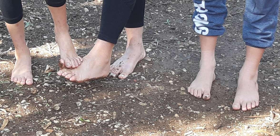 משפחות ברגליים יחפות