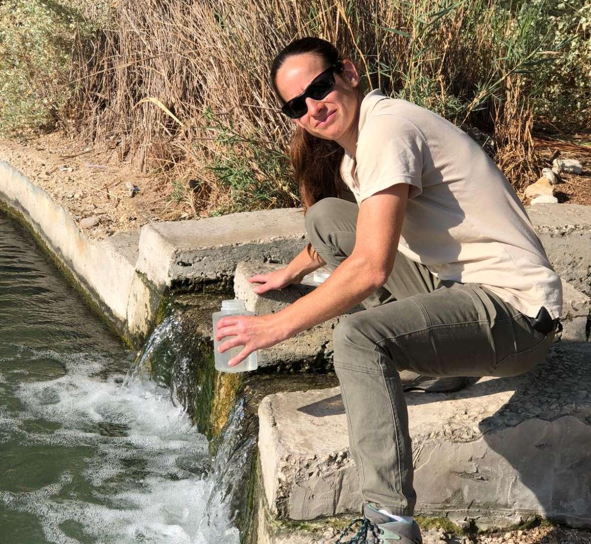 פקחית מים