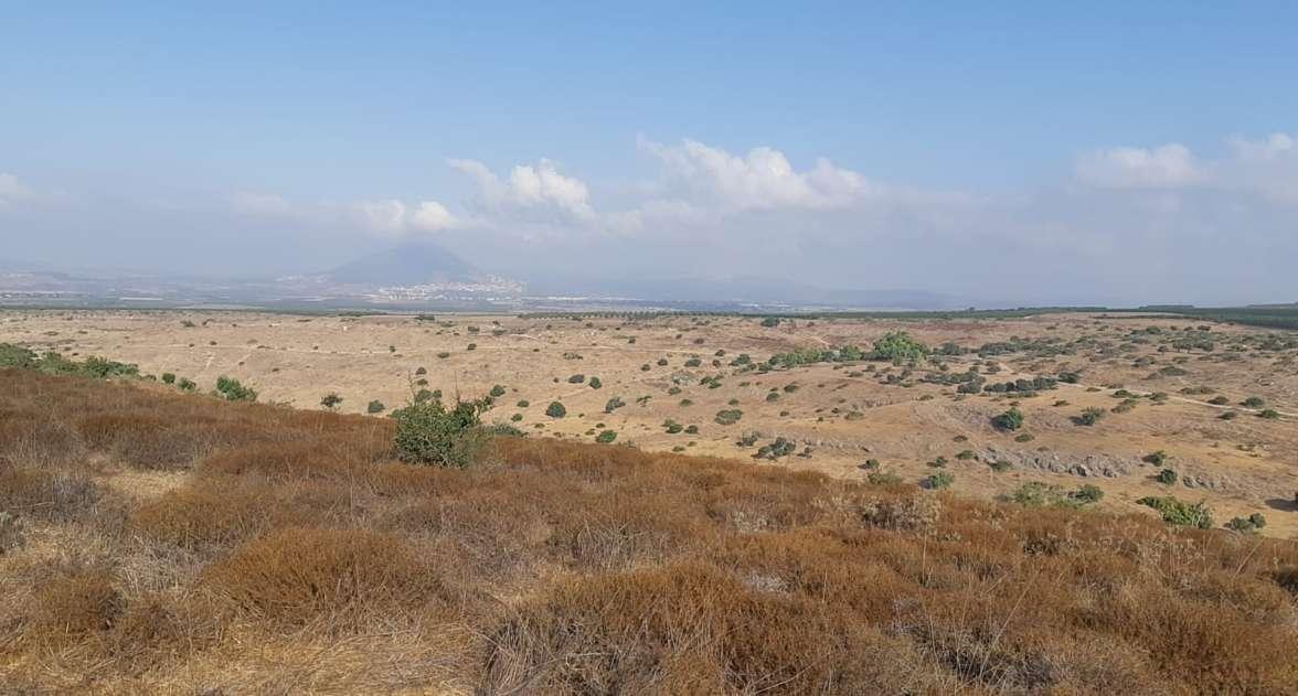 שמורת טבע אלות סירין