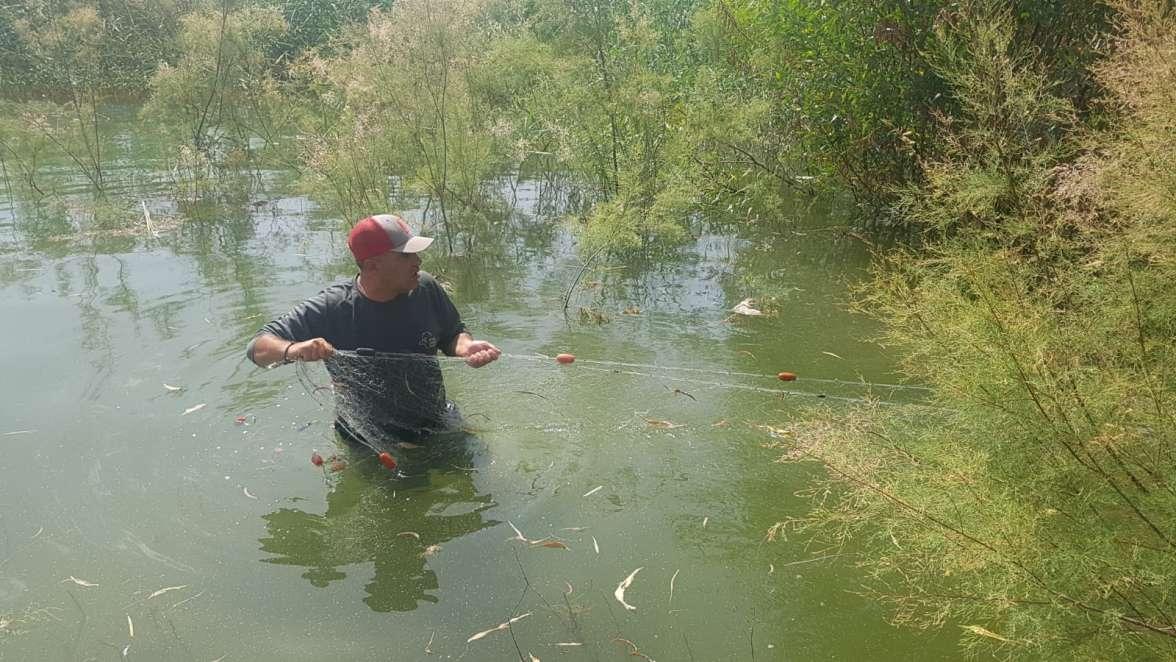 רשת דיג שנתפסה באגם בבטיחה. צילם אלדד איתן