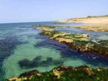ים שבי ציון-בוסתן הגליל, צילמה אורית ברנע
