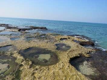 טבלאות הגידוד בחוף שבי ציון. צילמה: אורית ברנע