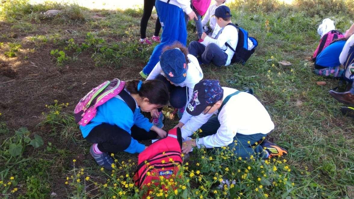 פעילות חקר של תלמידי בית הספר בשמורה - צילום רחל אשכול, רטג