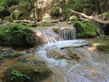 טיול למרגלות הר מירון בנחל עמוד עליון