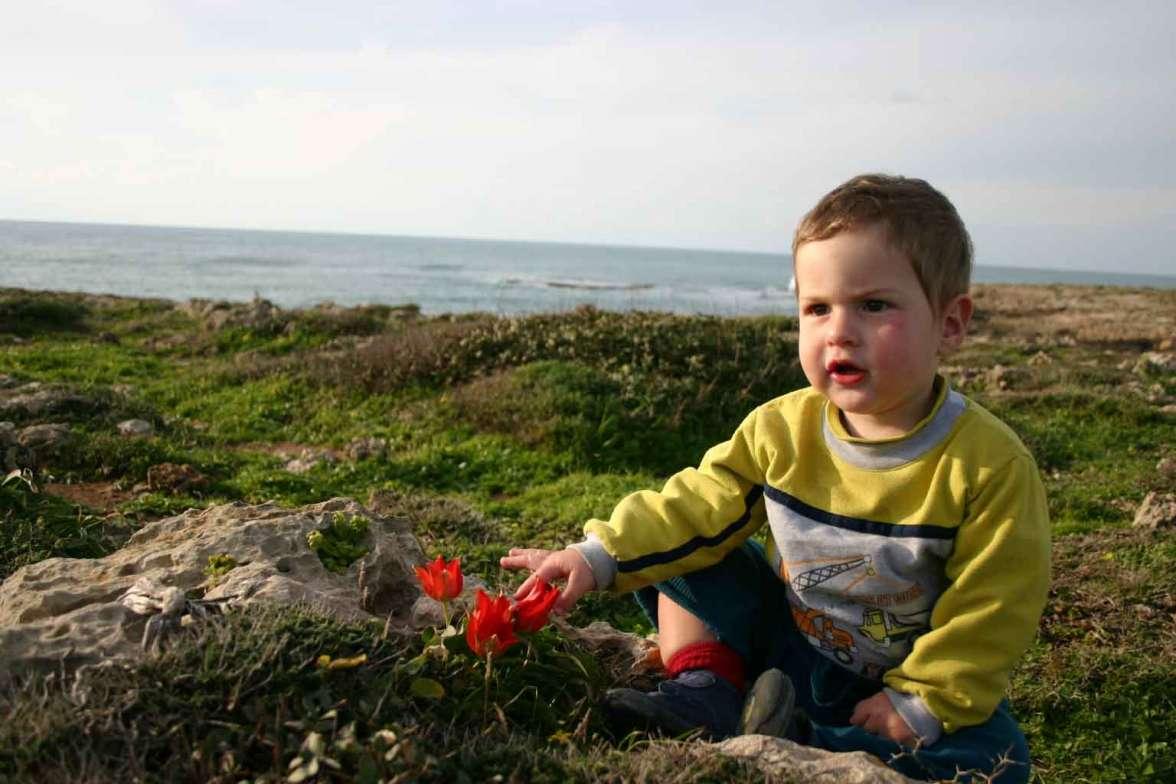 צבעוני והילד של תמי ודותן