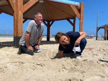 גילה גמליאל חופרת להוצאת ביצי צב ים