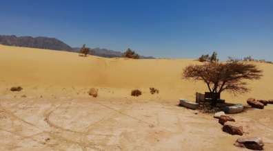 דיונות שמורת טבע חולות סמר - עודד סהר רשות הטבע והגנים (1)