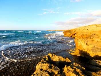 שמורת טבע חוף דור הבונים - יניב כהן רשות הטבע והגנים