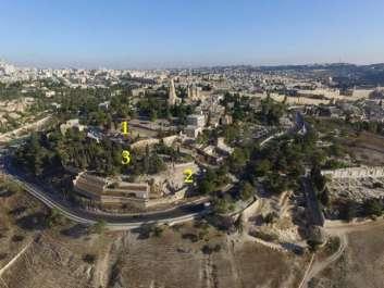 שטחי החפירות של המכון הארכיאולוגי הגרמני בהר ציון