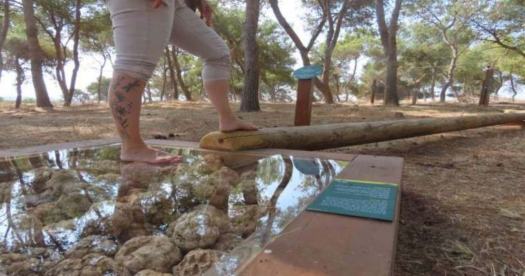 שביל הרגליים היחפות בעין אפק - צילמה שרית פלצ'י מיארה