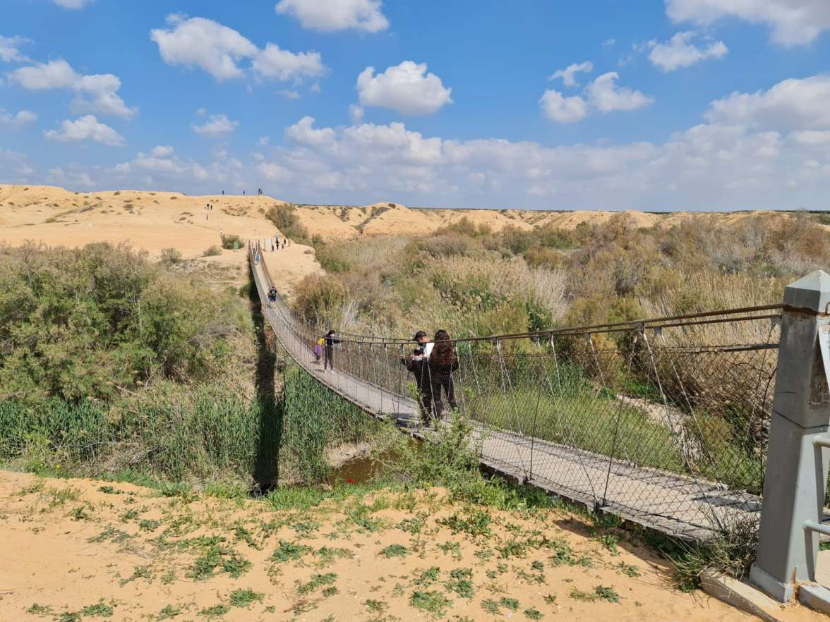 הגשר התלוי צילום ליאורה סלע דוד