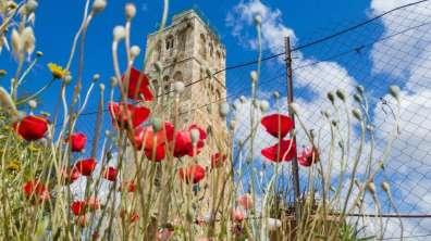 המגדל הלבן ברמלה צילום - רון פלד