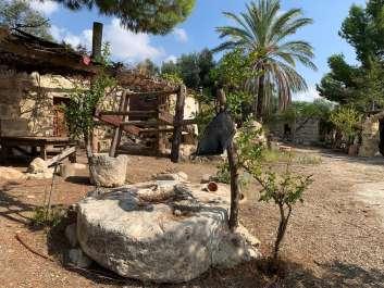 כפר חשמונאי שילת צילום באדיבות כפר חשמונאי