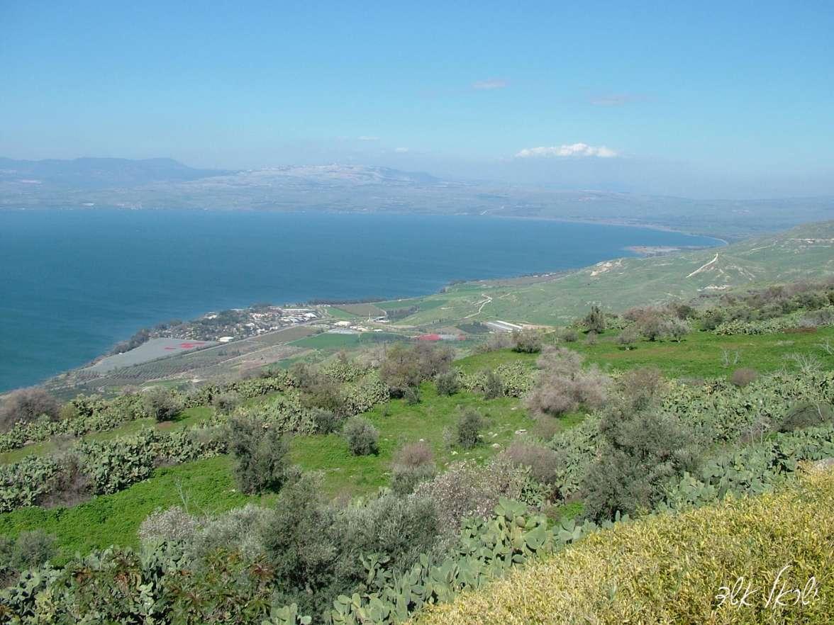 נוף טיילת מצוקי האון, צילום ישראל אשד