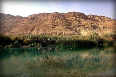 ברכה מלאכותית בשמורת טבע עינות צוקים- צילום שירן בן יעקב