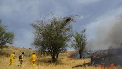 כיבוי שריפה - ליעד כהן רשות הטבע והגנים- שריפה